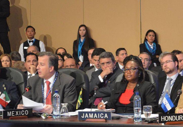 Meade Kuribreña dijo ante la OEA que México reafirma su compromiso a favor de acciones globales contra las drogas. (Notimex)