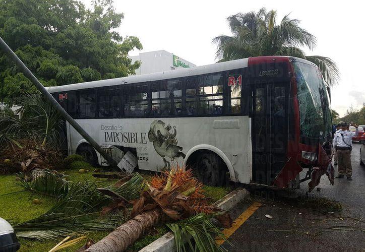 El camión terminó estrellándose contra una palmera en el bulevar Kukulcán. (Foto: Redacción)
