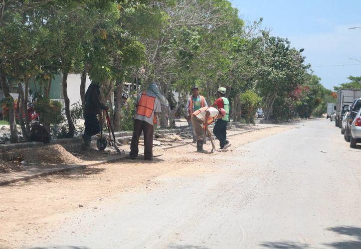 En la zona de La Guadalupana en donde cruzan las obras ya hay trabajadores de nuevo. (Adrián Barreto/SIPSE)