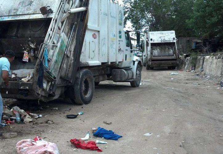 La recaudación municipal por el servicio de recolección de basura y licencias de funcionamiento, superó las expectativas este año. (Sara Cauich/SIPSE)
