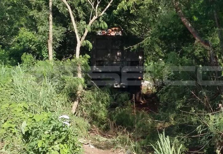 El tráiler responsable arrastró la camioneta hasta el interior del monte. (SIPSE)