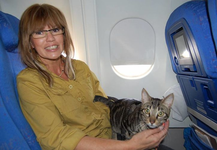 Virgin Australia recibe unas 30 mil mascotas anualmente. (viajejet.com)