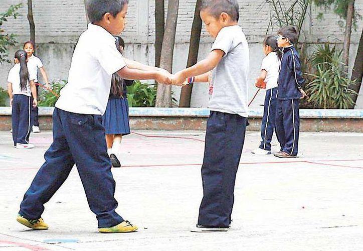 El proyecto de la escuela intercultural 'Alberto Correa' pretende que los niños estudien y concluyan la primaria a pesar de que por cuestión cultural deban trabajar con sus padres migrantes. (excelsior.com.mx)