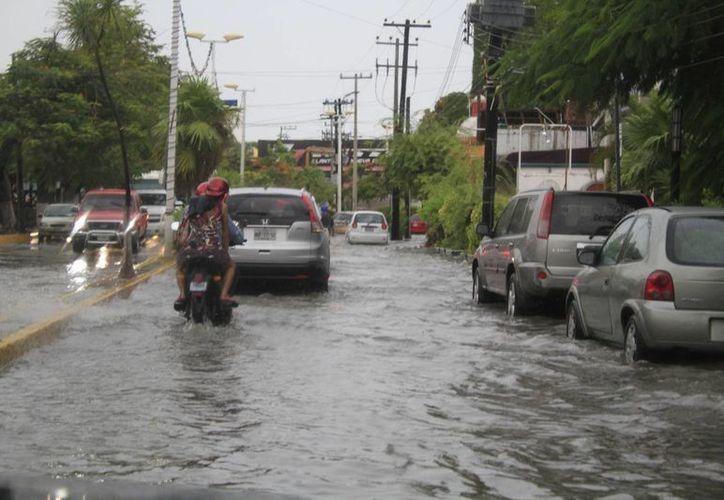 Recomiendan a la ciudadanía estar informada sobre las condiciones del clima. (Sergio Orozco/SIPSE)