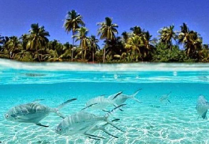 Tuvalu, un pequeño estado situado en Polinesia, en el océano Pacífico, encabeza la lista. (Contexto)