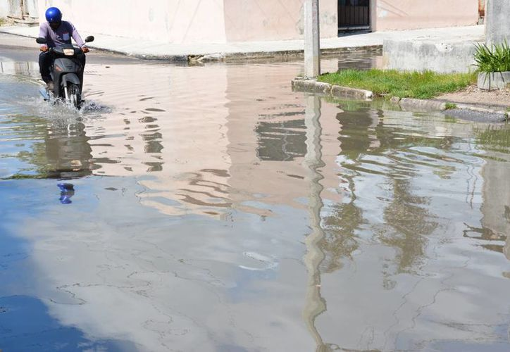 Cuando llueve el drenaje se colapsa y rebosan aguas negras de las coladeras. (Luis Soto/SIPSE)