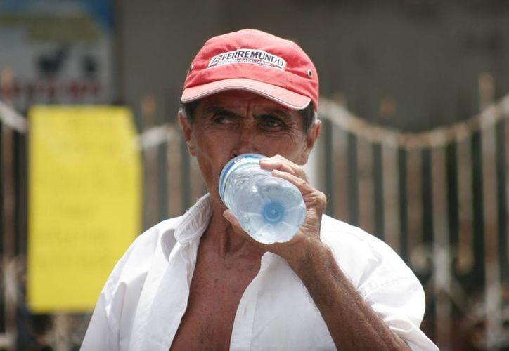"""La Sesa recomienda ingerir agua suficiente y no exponerse  por una larga jornada a los rayos solares para evitar el """"golpe de calor"""". (Harold Alcocer/SIPSE)"""