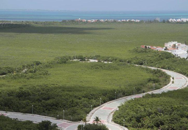 Todas las Áreas Naturales Protegidas serán respetadas, ya que están incluidas en el Programa de Ordenamiento Ecológico (POEL). (Tomás Álvarez/SIPSE)