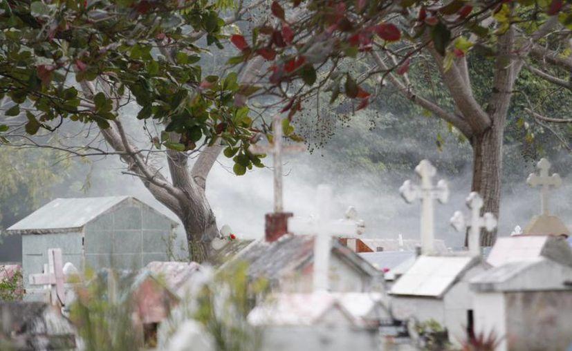 Se inició desde el jueves el operativo contra el dengue en los tres panteones de la ciudad. (Francisco Gálvez/SIPSE)