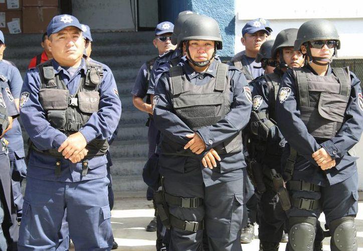 Con este nuevo grupo se va a duplicar la vigilancia en las comunidades rurales. (Gerardo Amaro/SIPSE)