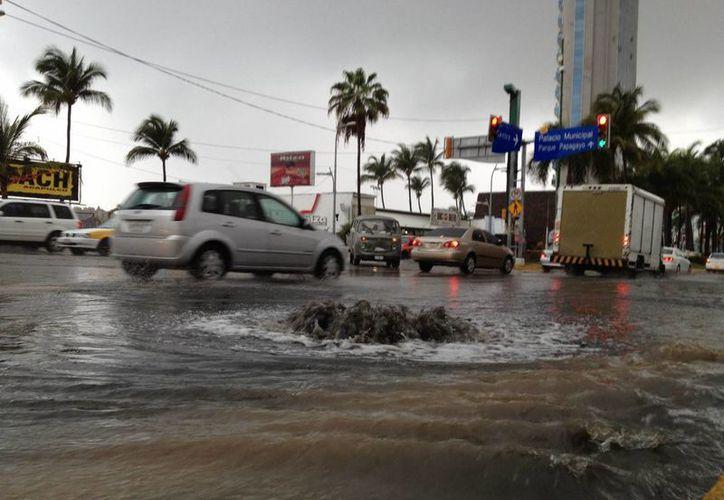 Las autoridades deben tomar medidas para evitar daños severos. (Israel Leal/SIPSE)