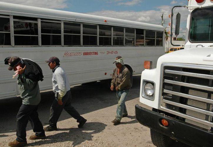 Los centroamericanos, principalmente personas procedentes de Honduras, Guatemala y El Salvador, cruzan por tierra, desde la frontera sur de México. (Archivo/EFE)