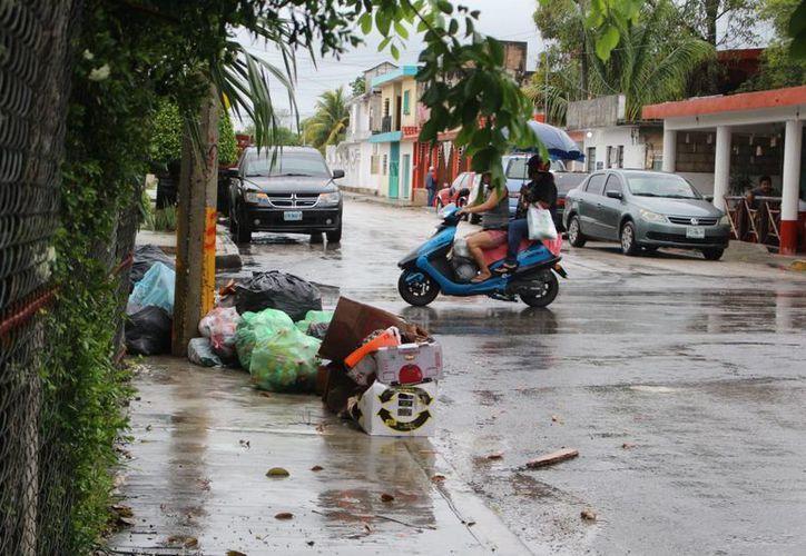 Las unidades de recoja de basura ahora pasan cada cuatro o cinco días.  (Benjamin Pat/SIPSE)