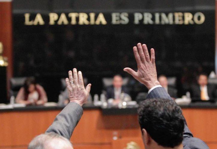 Los senadores discuten los puntos particulares de la ley antimonopolios, que se prevé quede lista este mismo viernes. (Notimex)
