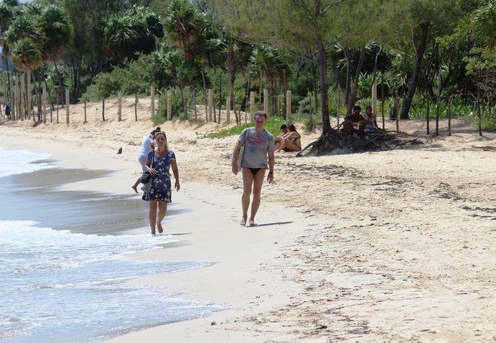 A pesar de la limpieza de las playas, el agua luce un ligero color café, debido a la acumulación de las algas por varios días. (Octavio Martínez/SIPSE)
