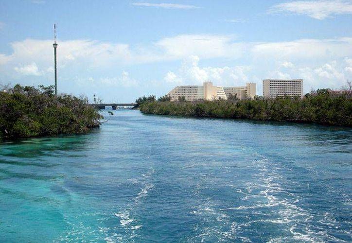 La destrucción de manglares ha contribuido a la extinción de especies endémicas. (Foto de Contexto/Internet)