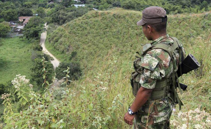 El ELN no entra aún en diálogos de paz con el gobierno. (Reuters)