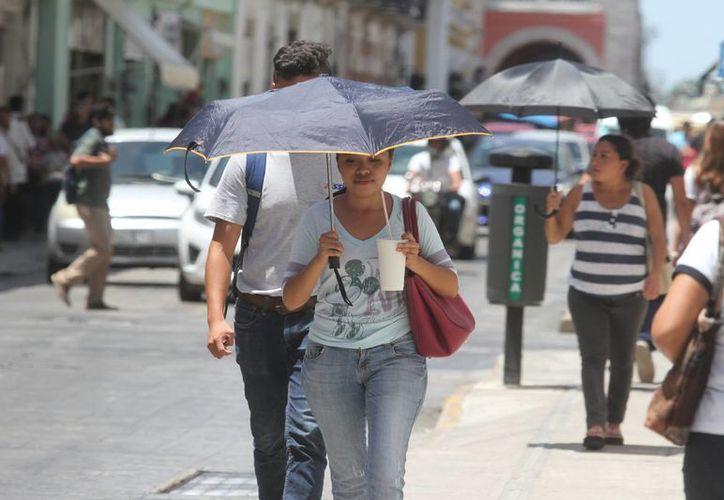 La canícula es un fenómeno climático que anualmente se registra en diversas regiones de México y se caracteriza por una reducción de lluvias y aumento de calor. (Milenio Novedades)