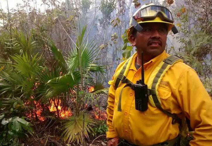 Los hombres que combaten los incendios aún no terminan su labor, pues faltan por venir las quemas que realizan los agricultores. (Foto: Juan Rodríguez / SIPSE)
