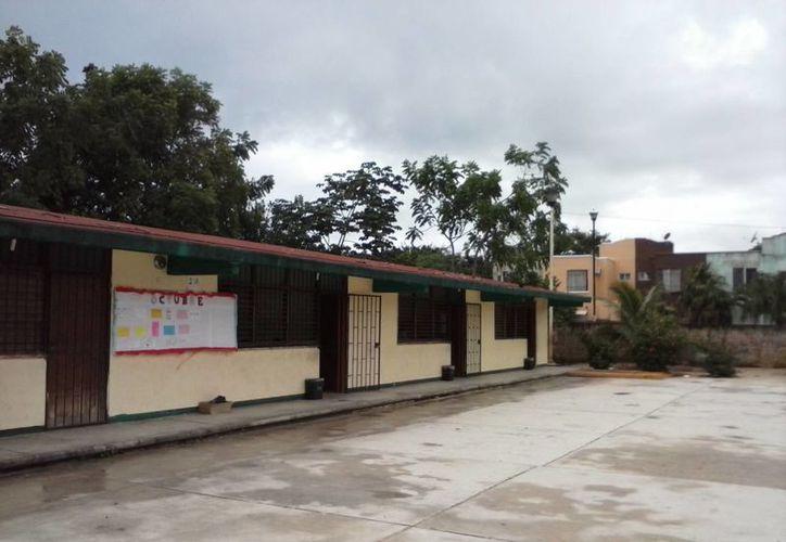 Debido a que la escuela está cerca de un predio con maleza, los mosquitos proliferan en el plantel.  (Irelis Leal/SIPSE)