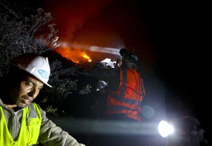 Los incendios forestales en Chile están acabando con bosques, ganados y comunidades completas. (AP/Esteban Felix)