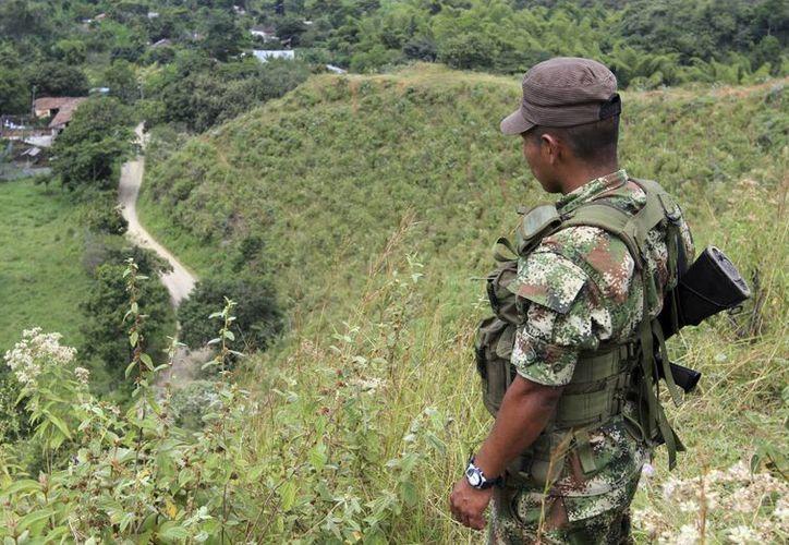 Los mitares fueron atacados con explosivos en una zona rural. (Archivo/Reuters)