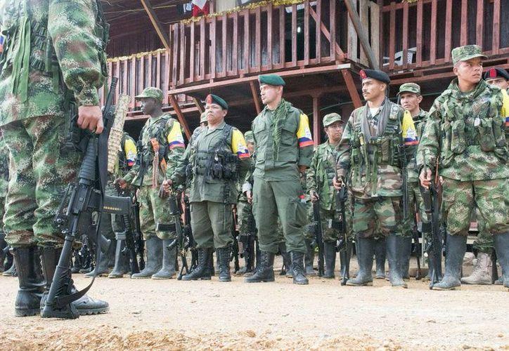 Unidades de FARC Occidente antes de salir a su última marcha guerrillera. (twitter.com/FARC_EPueblo)