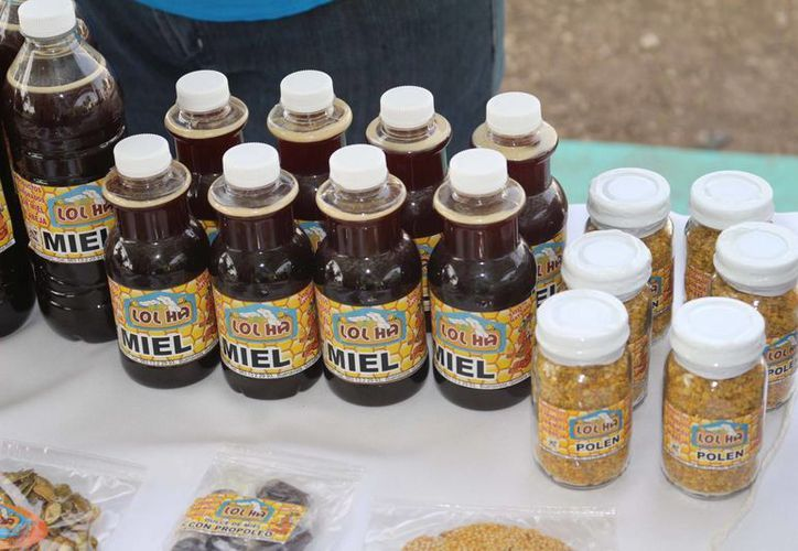 La miel hecha en Q. Roo es muy cotizada fuera del país. (Jorge Carrillo/SIPSE)