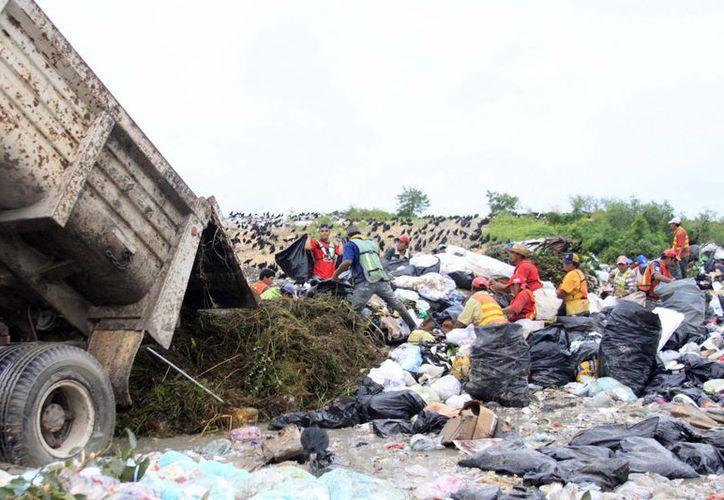 Autoridades municipales aceptan que el basurero representa un problema serio para Othón P.  Blanco, al no cumplir con las condiciones óptimas y necesarias para un relleno sanitario. (Harold Alcocer/SIPSE)