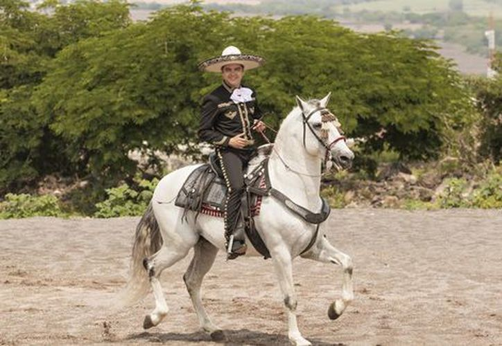 Seis caballos educados en la alta escuela lucirán en la inauguración de la feria. (Foto: El universal)