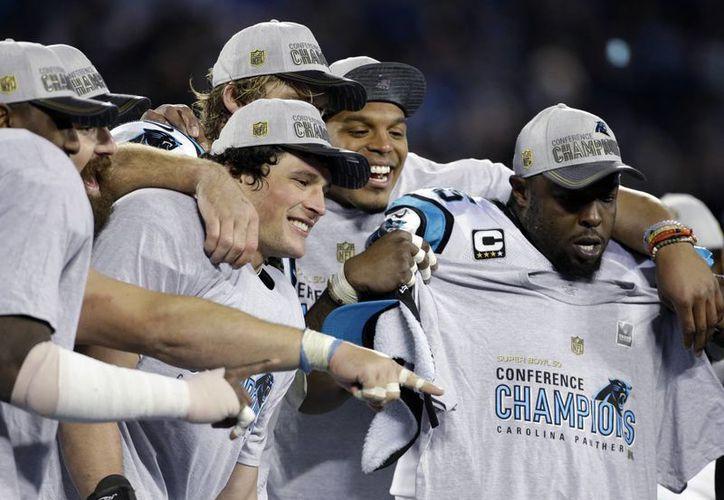 Las Panteras de Carolina se coronaron campeonas de la NFC este domingo y obtuvieron su segundo pase al Super Bowl en su historia. Ahora se prepararán para buscar el campeonato de la NFL ante los Broncos de Denver. (Imágenes de AP)