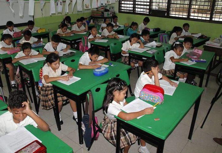 La Prueba Planea Diagnóstica se aplicará desde este jueves a alumnos de cuarto grado de primaria en Yucatán. (SIPSE)