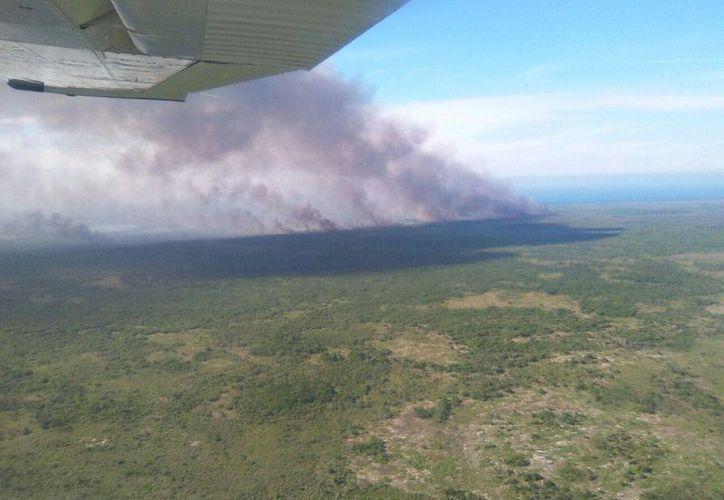 A las autoridades se les complica acabar con un enorme incendio en la reserva de Dzilam de Bravo. (SIPSE)