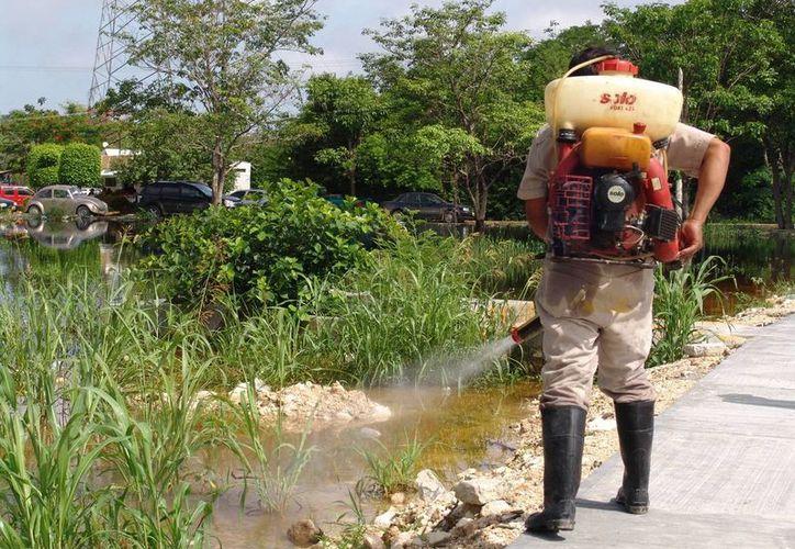 La Secretaría de Salud del Gobierno del Estado mantiene un operativo permanente contra el dengue y chikungunya en colonias y comisarías de Mérida y del interior del estado. Imagen del personal de sanidad al fumigar en un municipio. (Archivo/SIPSE)