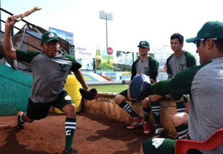 Carlos Pecho(foto), oriundo de Motul, debutó la temporada pasada al lanzar frente a Pericos de Puebla y Bronco de Reynosa.(Milenio Novedades)