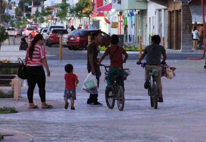 Esta actividad laboral no debe practicarse en Quintana Roo. (Paloma Wong/SIPSE)