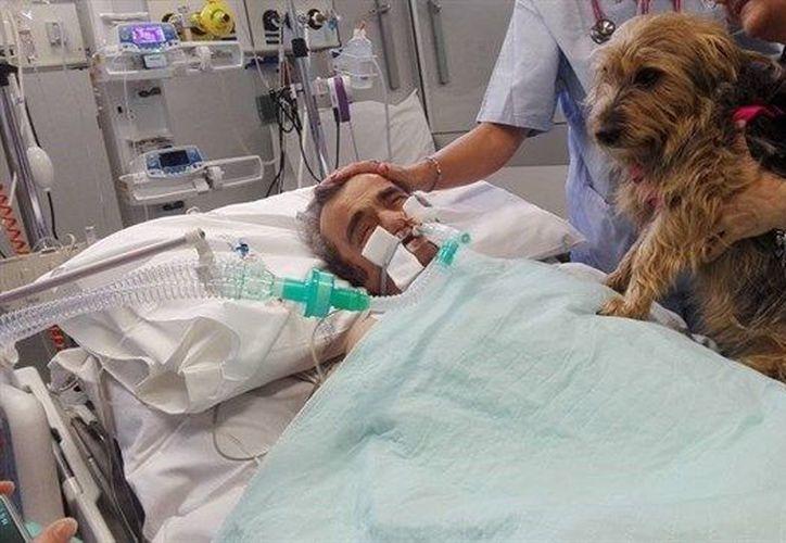 Su estado mejoró a partir de la visita de su mascota. (europapress)