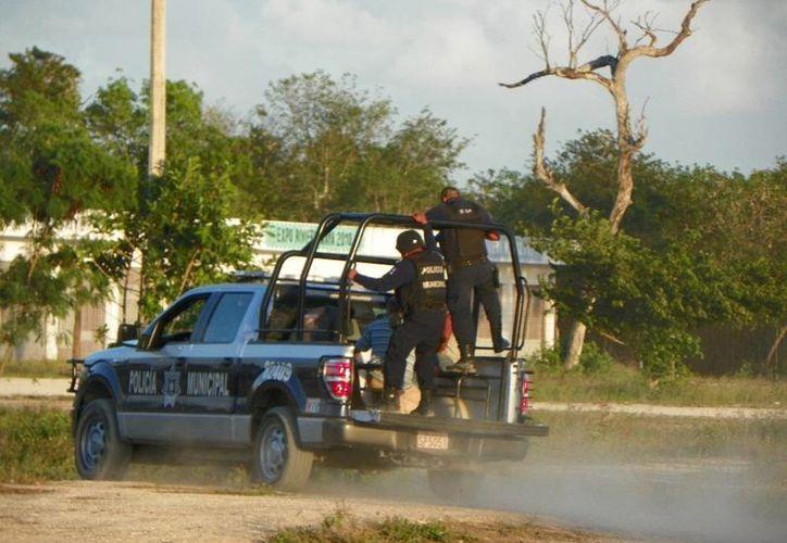 Elementos de la policía ingresaron a los terrenos luego del reporte de balacera que recibieron. (Redacción/SIPSE)
