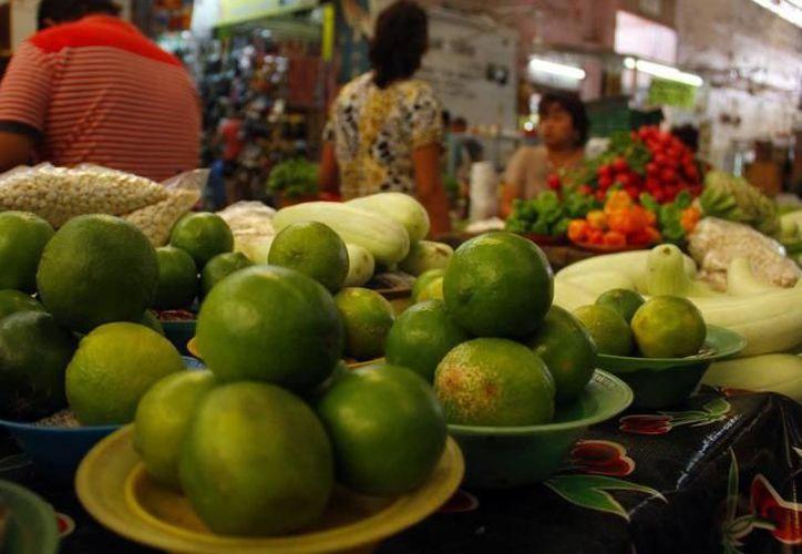 Aseguran que el costo del limón se estabilizará entre abril y mayo. (SIPSE)