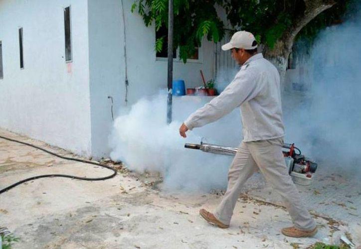 En Campeche se registró el primer muerto por dengue, lo que obligará a las autoridades a reforzar las labores de prevención y fumigación. (Imagen de contexto/SIPSE)