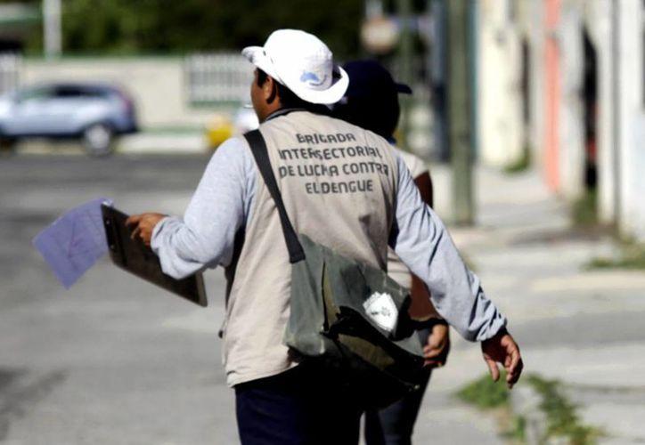 Los brigadistas continúan la lucha contra el dengue en Mérida. (Milenio Novedades)