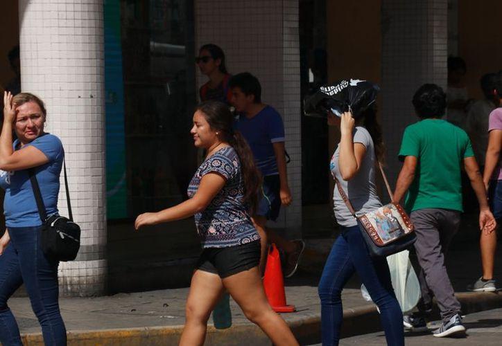 Temperaturas muy calurosas se sentirán durante los próximos días. (José Acosta)