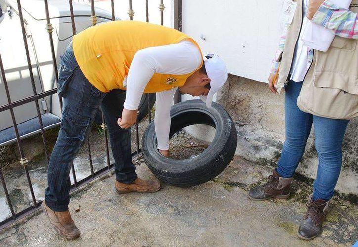 El titular de la Secretaría de Salud de Yucatán (SSY), Jorge Eduardo Mendoza Mézquita, afirmó que el estado ha descendido a la séptima posición nacional en casos de dengue. (SIPSE)