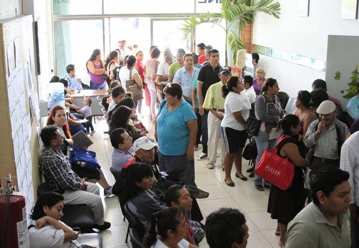Las oficinas del Instituto Nacional Electoral se convierten en la dependencia más visitada durante esta semana. (Harold Alcocer/SIPSE)