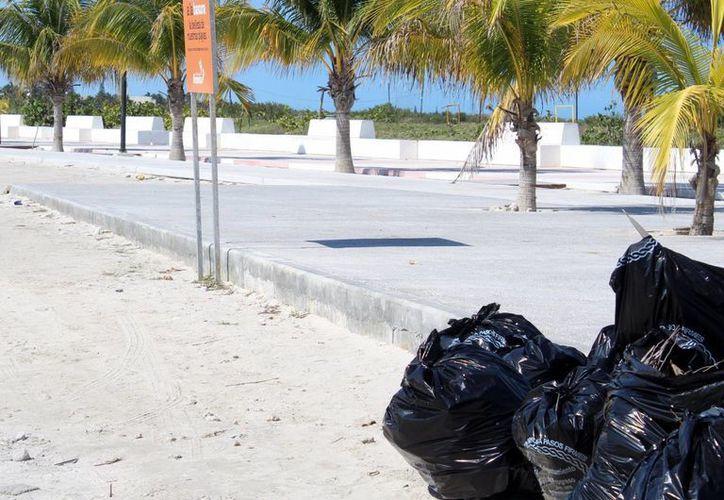 Después de las celebraciones carnestolendas queda mucha basura en la calle de Progreso. (Gerardo Keb/Milenio Novedades)