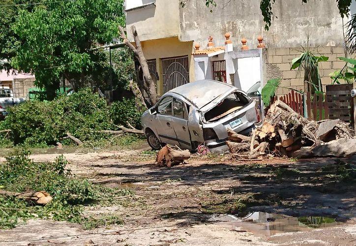 Una de los lugares que sufrió afectaciones por la tormenta eléctrica el día de ayer: Tierra Maya. (Redacción)
