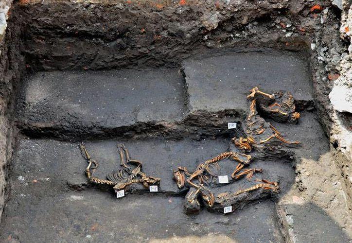 El hallazgo en Montemorelos  sería uno de los pocos de sitios descubiertos en Nuevo León donde se muestra la relación de los humanos con los grandes mamíferos de la antigüedad. El INAH ya investiga. (inah.gob.mx/Foto de contexto)