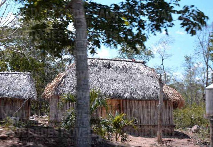 Las viviendas son endebles porque están construidas con materiales de la región. (Jesús Caamal/SIPSE)