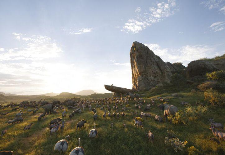"""""""El Rey León"""" de Jon Favreau, tan lleno de simulaciones realistas del mundo natural, curiosamente se siente sin vida.  (Disney vía AP)"""