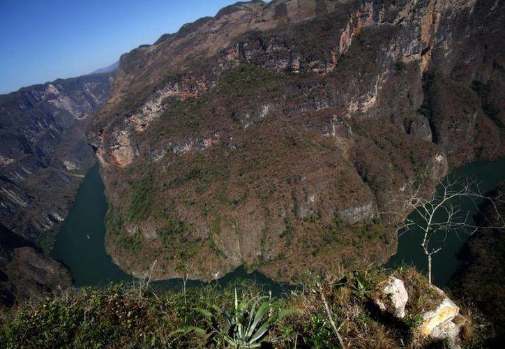 El Cañón del Sumidero luce ahora su mejor rostro para recibir a miles de visitantes. (Archivo/Notimex)